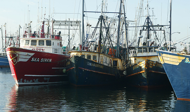 Fishing boats in New Bedford, Mass.